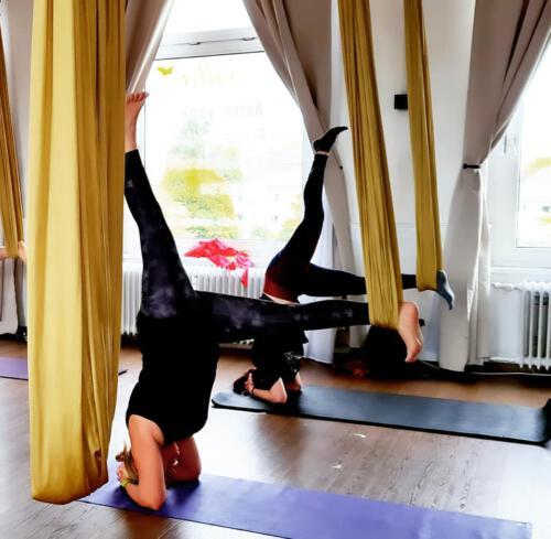 Aerial-Yoga-Insider-3